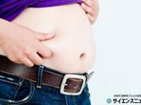 食べる順序は米より魚や肉が先。血糖の急上昇を抑えて糖尿病予防