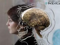 何を見てるかわかっちゃう? 脳波から視線を「のぞく」ソフトウェアが開発される