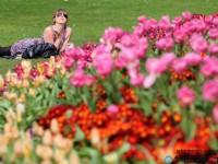 春にうっかりミスが増えるのはナゼ? 四季が脳に及ぼす影響