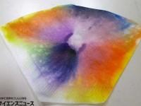 【夏休みは自由研究・工作】水滴で咲かせるインクの花【100円ショップで科学作品!】